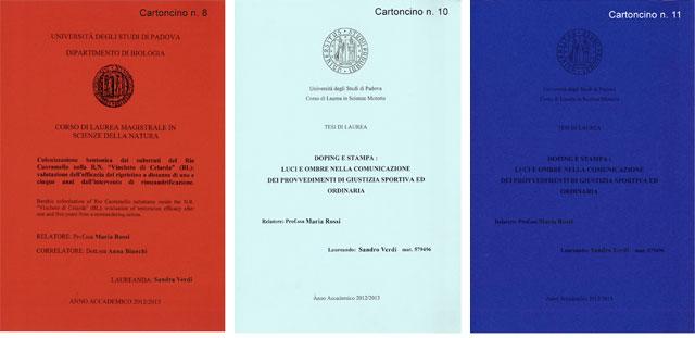 cartoncini-190-numero81011